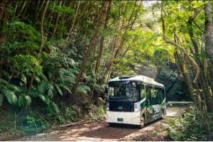 世界遺産やんばるの森を学べるツアーの写真