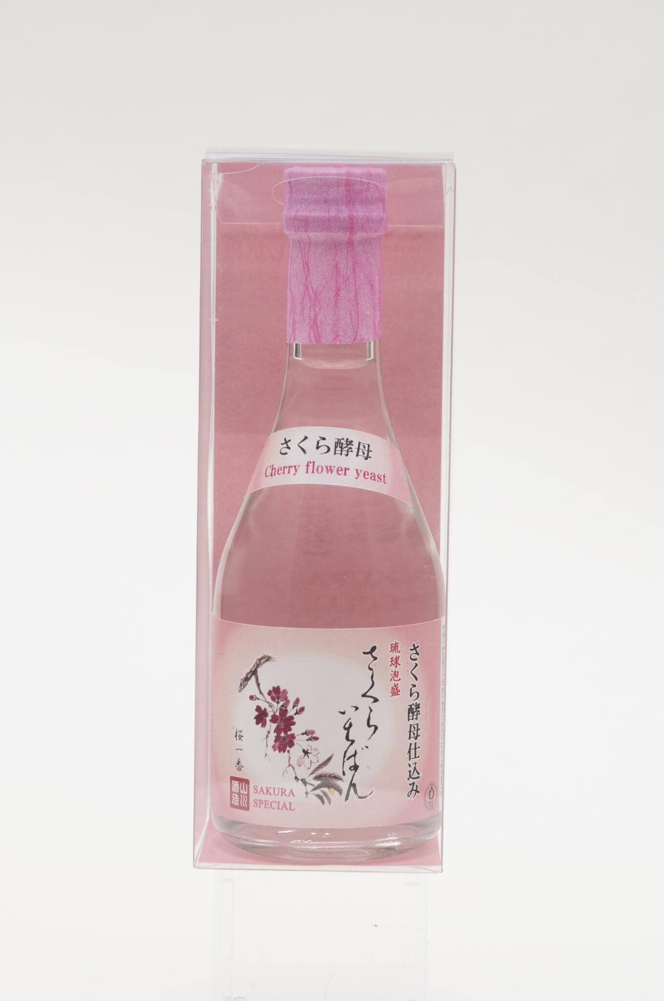 沖縄に桜の季節到来!! 八重岳の桜のさくら酵母仕込み