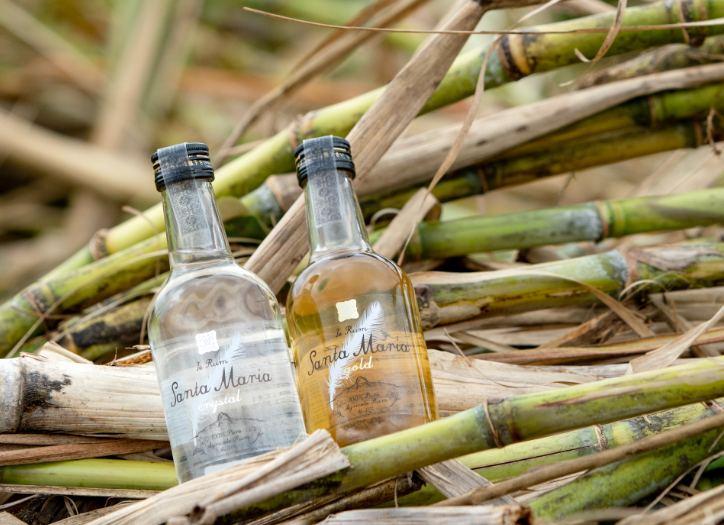 伊江島で育てられた手刈りのサトウキビから造られたラム酒